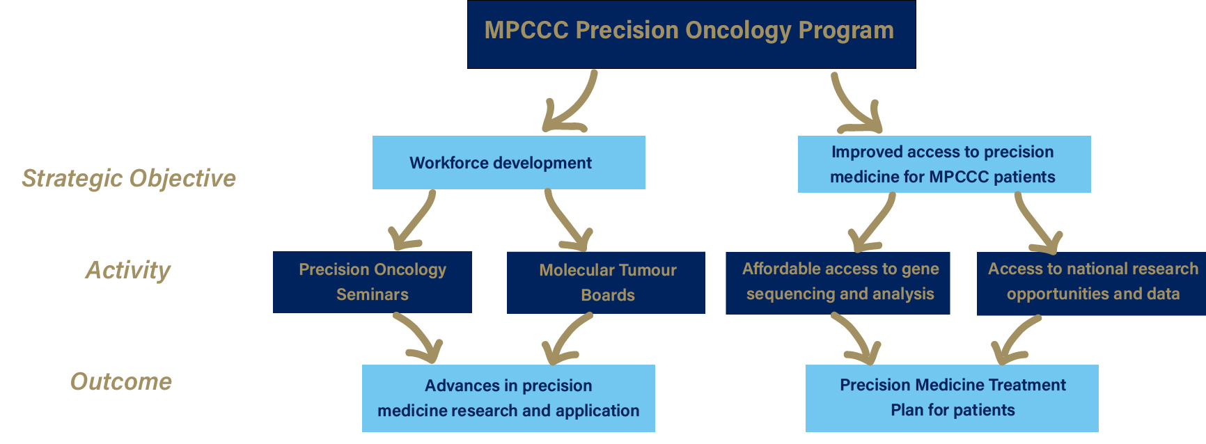 precision oncology program diagram